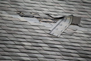 Repair or Replace Your Savannah Roof 912-481-8353